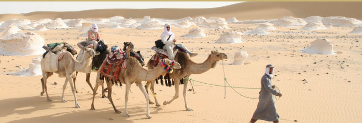 Egypt Adventure Tours
