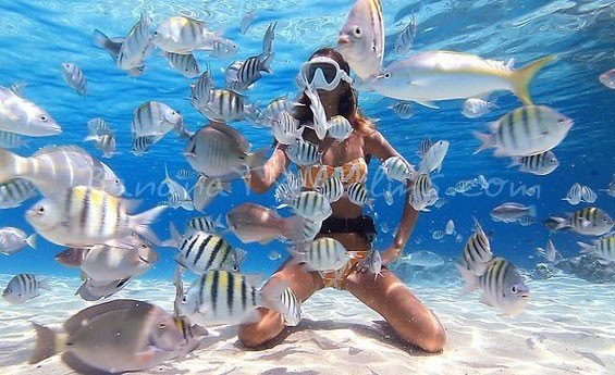 AIN SOKHNA / RED SEA / SNORKELING