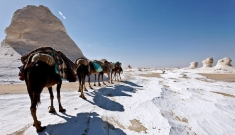 Cairo, Bahariya and White Desert Tour