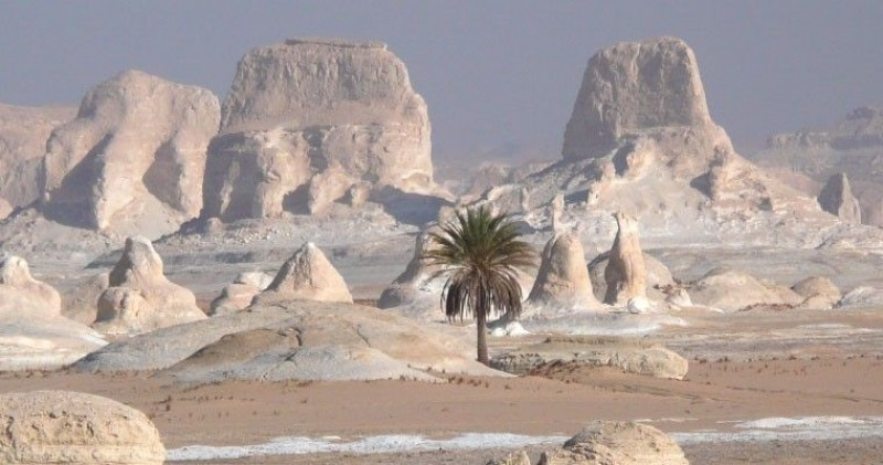 2 Nights, 3 Days Bahareya Oasis (White Desert)
