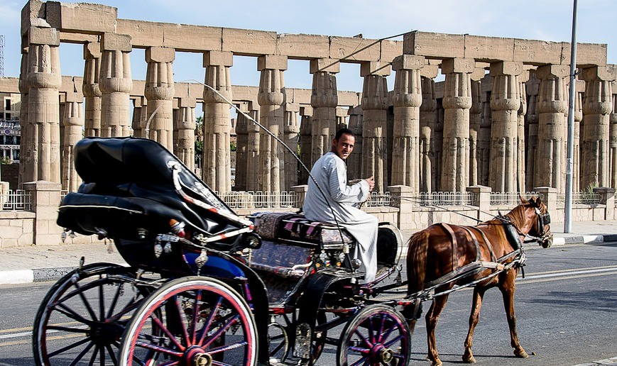 LUXOR TOUR BY HORSE CARRIAGE